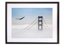 Eagle over the Golden Gate - 50 x 40 cm