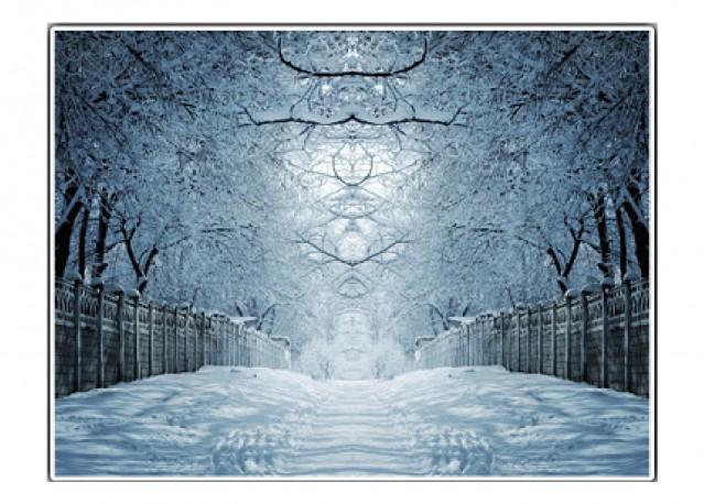 Paysage d'hiver - 66 x 50 cm